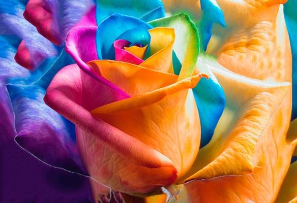 savršena-kombinacija-boja